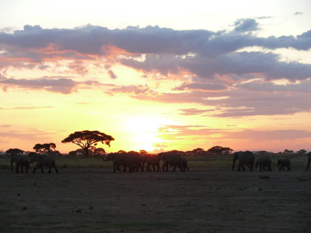 reistips-kenia