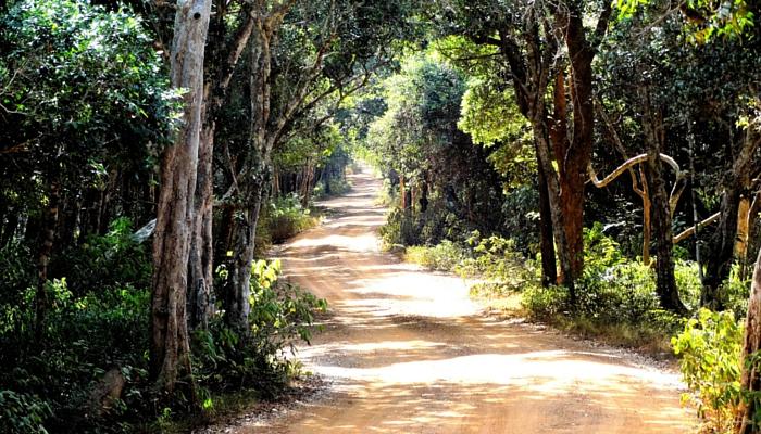 Sri Lanka, Wilpattu