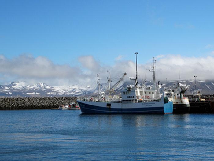 orka's ijsland