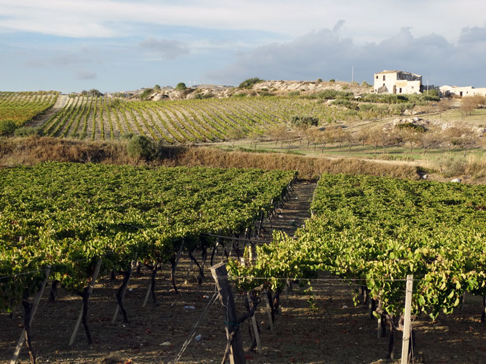 italiaanse-wijnlanden