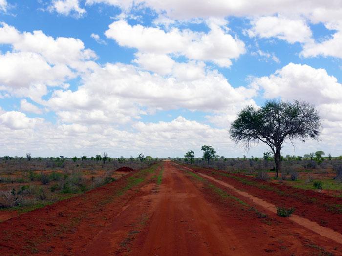 Kenia-Tsavo-omgeving