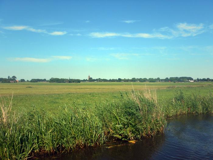 Varkensland Waterland Staatsbosbeheer
