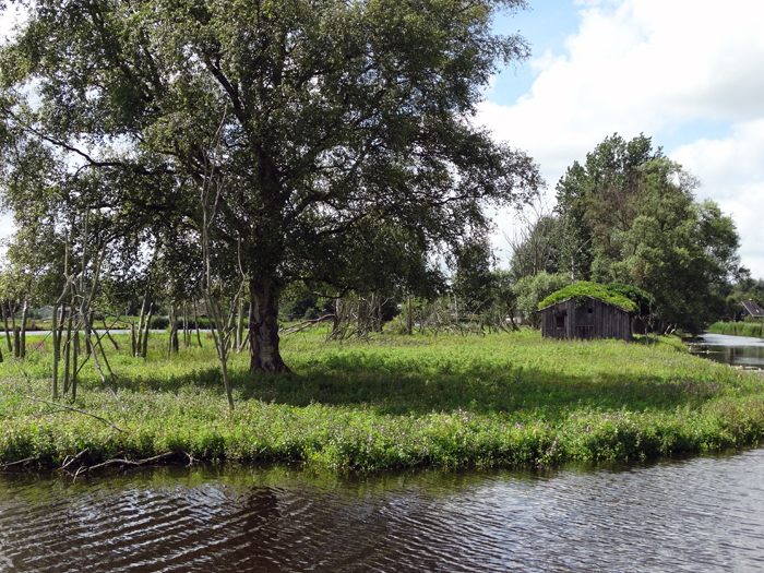 Natuurgebied 't Ilperveld