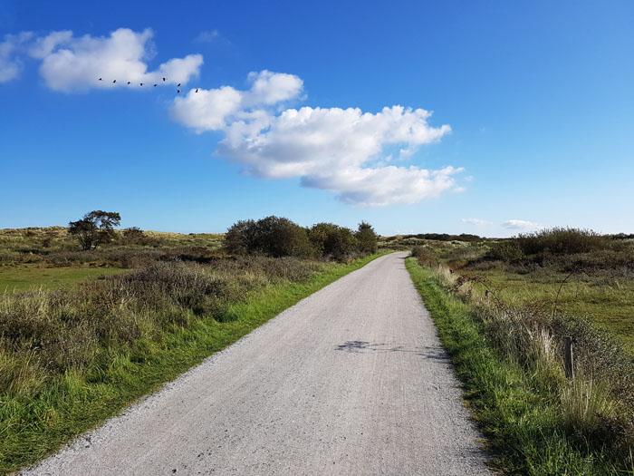 Natuurgebied de Boschplaat Terschelling