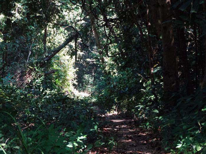 Wandeling vuurtoren Koh Rong Samloem Cambodja