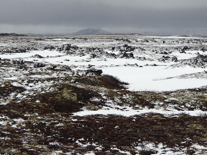 Lavavelden van Mývatn IJsland