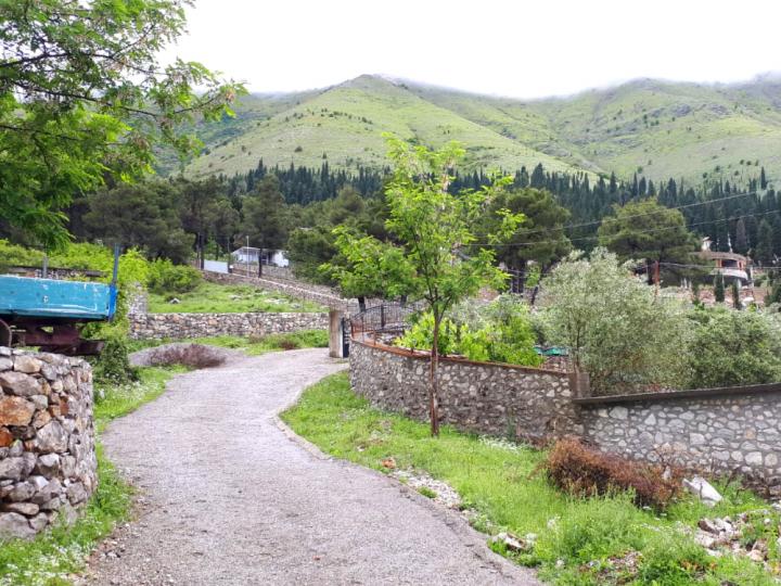 Zelf autorijden en auto huren Albanië