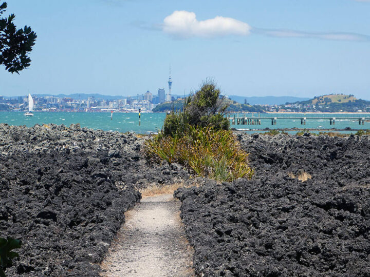 Rangito island lava field Nieuw-Zeeland